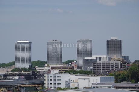 東戸塚高層マンション群の写真素材 [FYI01260845]
