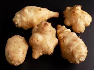 菊芋 キクイモ Jerusalem artichoke の写真素材 [FYI01260861]