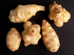 菊芋 キクイモ Jerusalem artichoke の写真素材 [FYI01260862]