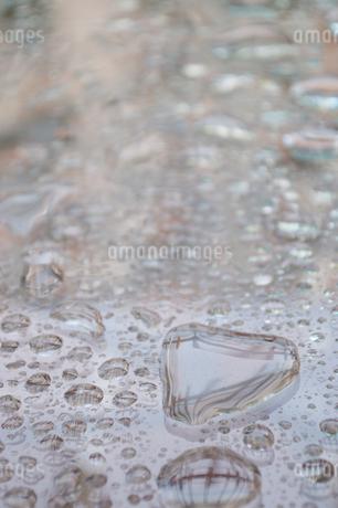 ハートの形をした水滴の写真素材 [FYI01260980]