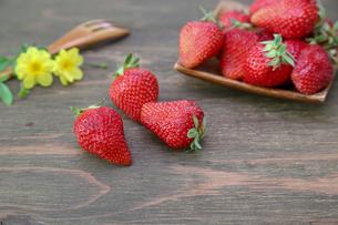 イチゴの写真素材 [FYI01261031]