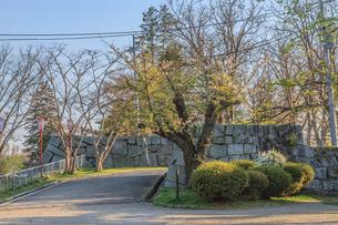 春の盛岡城の烏帽子岩の風景の写真素材 [FYI01261043]