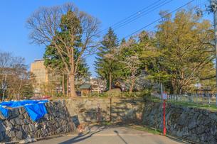 春の盛岡城の瓦御門跡の風景の写真素材 [FYI01261048]