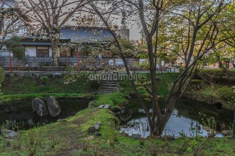 春の盛岡城の水堀の風景の写真素材 [FYI01261050]