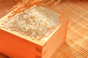 米と稲穂 新米の写真素材 [FYI01261115]