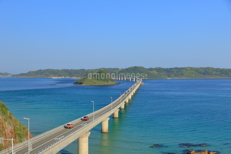 早朝の角島大橋の写真素材 [FYI01261133]