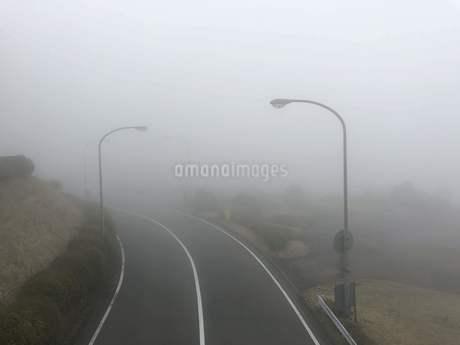 濃霧で先が見えない不安な道路の写真素材 [FYI01261135]
