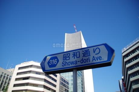 昭和通り看板の写真素材 [FYI01261152]