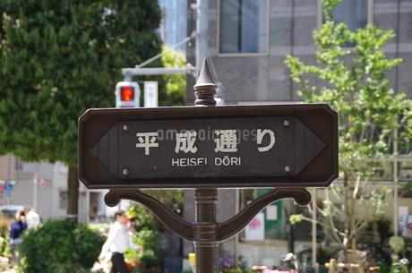 平成通りの写真素材 [FYI01261153]