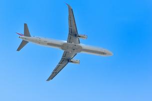 離陸した旅客機の写真素材 [FYI01261210]