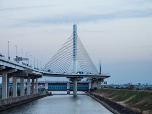 かつしかハープ橋の写真素材 [FYI01261529]