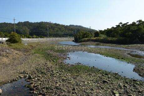 日本の田舎の川辺の写真素材 [FYI01261644]