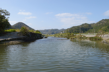 日本の田舎の川辺の写真素材 [FYI01261645]