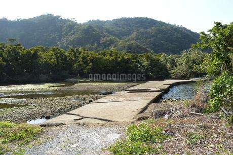 日本の田舎の川辺の写真素材 [FYI01261665]