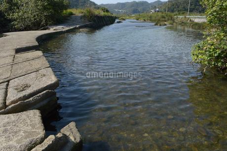 日本の田舎の川辺の写真素材 [FYI01261670]