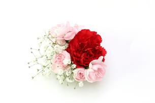 カーネーションとカスミソウの花束の写真素材 [FYI01261706]