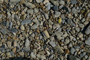 川原の石の写真素材 [FYI01261894]