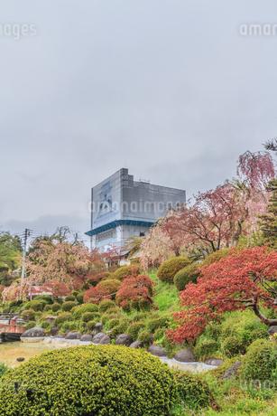 春の月岡公園からみた風景の写真素材 [FYI01261904]