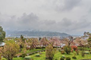 春の月岡公園からみた風景の写真素材 [FYI01261907]
