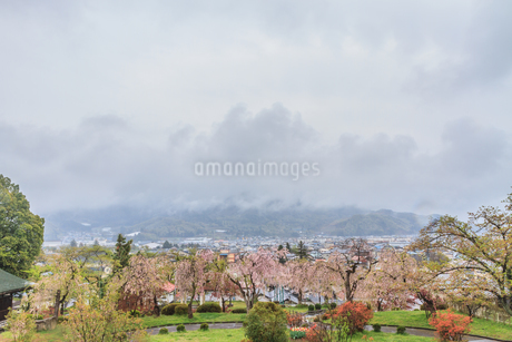 春の上山城からみた風景の写真素材 [FYI01261911]