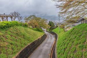 春の上山城の風景の写真素材 [FYI01261913]