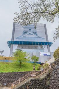 春の上山城の風景の写真素材 [FYI01261918]