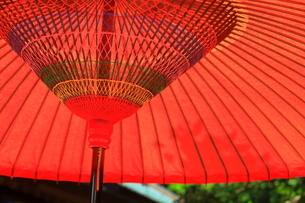 野点 和傘の写真素材 [FYI01261950]