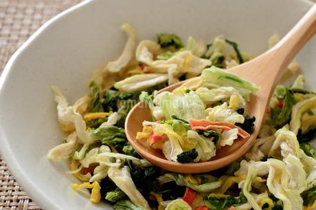 乾燥野菜の写真素材 [FYI01261957]