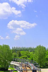 杜の都 仙台 西公園より新緑を愛でるの写真素材 [FYI01261998]