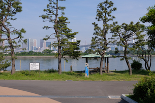 お台場海浜公園の写真素材 [FYI01262294]