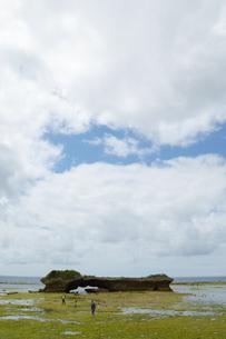 潮干狩りをしている人々の写真素材 [FYI01262453]