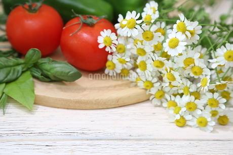 マトリカリアと野菜の写真素材 [FYI01262779]