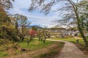 春の箕輪城の風景の写真素材 [FYI01262781]