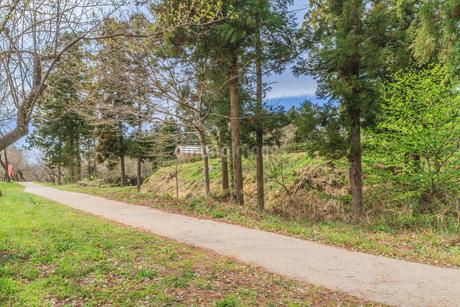 春の箕輪城の風景の写真素材 [FYI01262806]