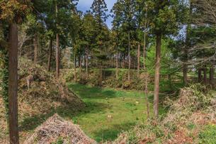 春の箕輪城の風景の写真素材 [FYI01262809]