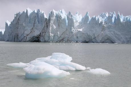 ペリト・モレノ氷河の写真素材 [FYI01262821]