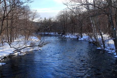 厳寒の北海道凍りつく屈斜路湖の写真素材 [FYI01262850]