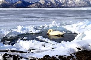 厳寒の北海道凍りつく屈斜路湖の写真素材 [FYI01262867]
