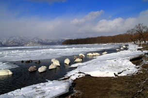 厳寒の北海道凍りつく屈斜路湖の写真素材 [FYI01262891]
