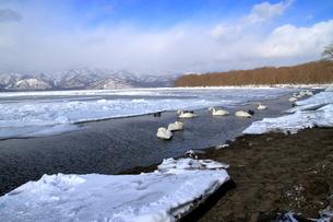 厳寒の北海道凍りつく屈斜路湖の写真素材 [FYI01262894]
