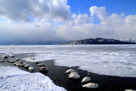 厳寒の北海道凍りつく屈斜路湖の写真素材 [FYI01262895]