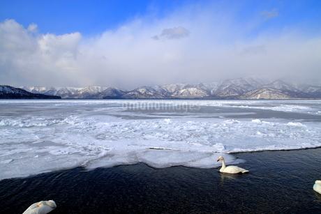 厳寒の北海道凍りつく屈斜路湖の写真素材 [FYI01262897]