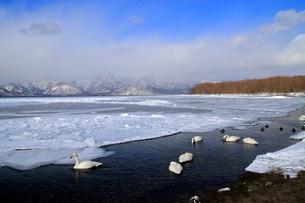 厳寒の北海道凍りつく屈斜路湖の写真素材 [FYI01262898]