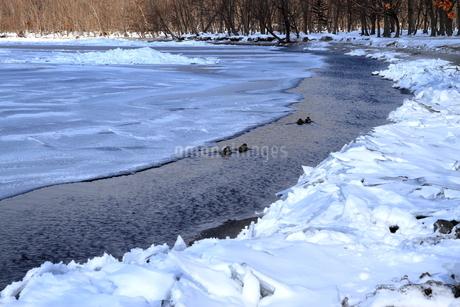 厳寒の北海道凍りつく屈斜路湖の写真素材 [FYI01262900]