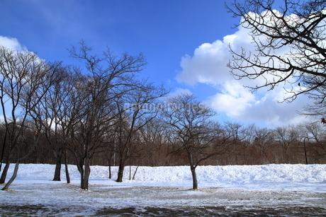 厳寒の北海道凍りつく屈斜路湖の写真素材 [FYI01262904]