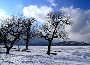 厳寒の北海道凍りつく屈斜路湖の写真素材 [FYI01262917]