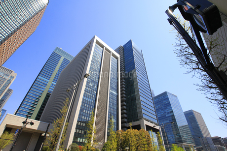 丸の内高層ビルの写真素材 [FYI01263039]