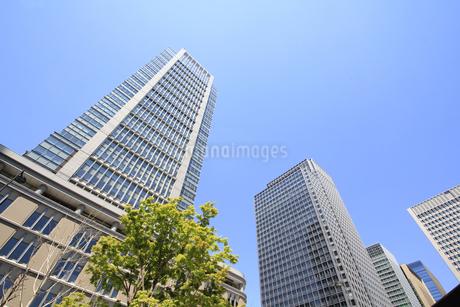丸の内高層ビルの写真素材 [FYI01263040]