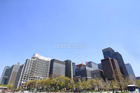 丸の内高層ビルの写真素材 [FYI01263044]