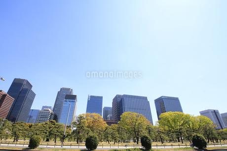 丸の内高層ビルの写真素材 [FYI01263045]